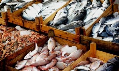 المنتجات السمكية في إيران