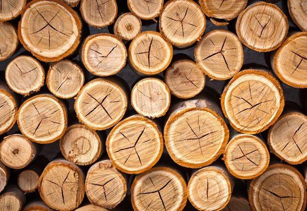 الخشب والصناعات الخشبية موقع التجارة ويب WWW.ALTTEJARAT.COM